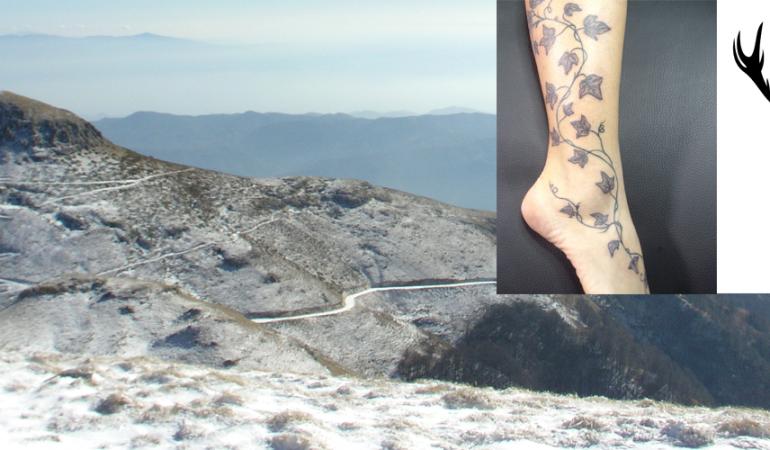 Τα τατουάζ που είχαν οι μαινάδες και οι μυημένοι στα μυστήρια του Διονύσου – ΓΕΤΑΣ, ΒΑΣΙΛΙΑΣ ΤΩΝ ΗΔΩΝΩΝ